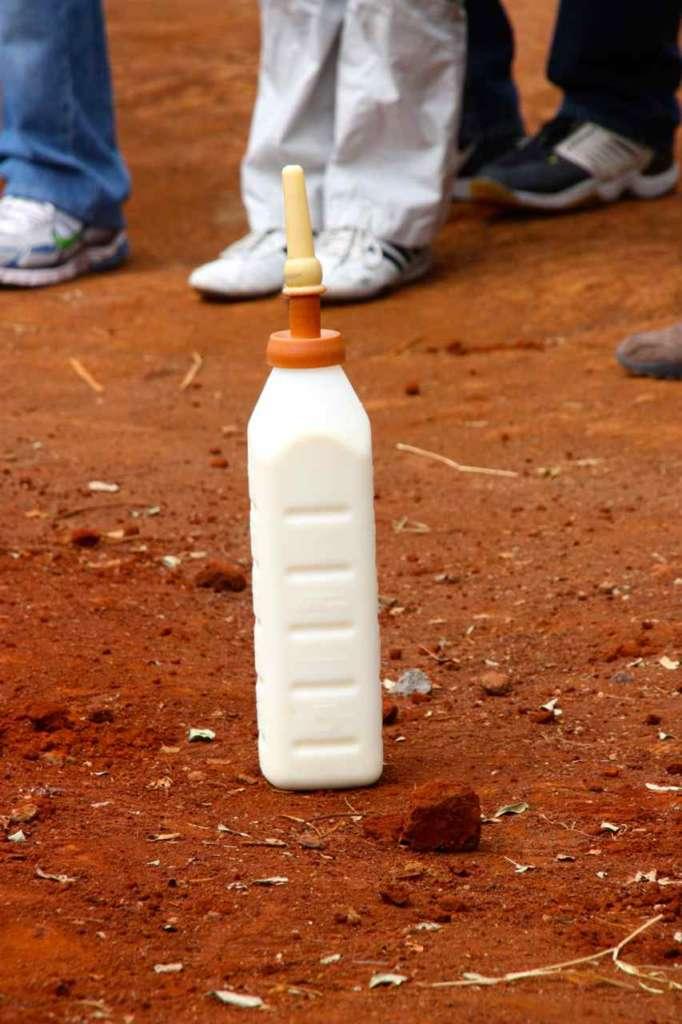 Biberón. Orfanato de Elefantes de David Sheldrick en Nairobi (Kenia)
